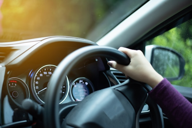 Hands on steering wheel on the right with country side view