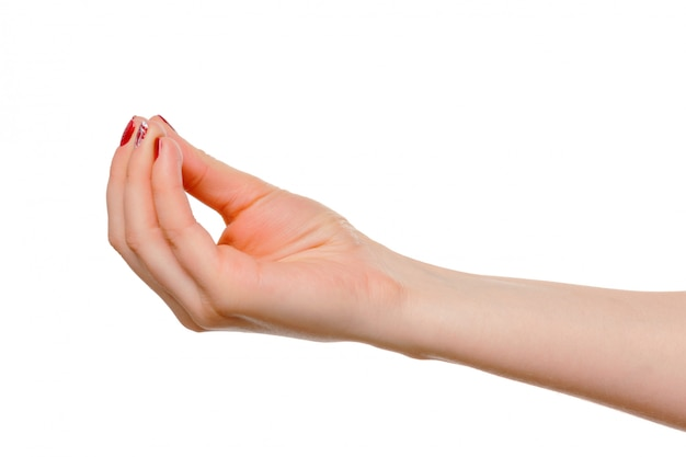 Hands take gesture of open palm for holding on white
