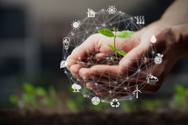오염과 탄소 배출을 줄이기 위해 재생 가능한 자원의 기술을 사용하는 손.