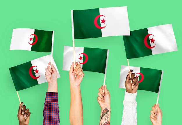 Hands waving flags of algeria