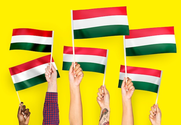 Hands waving flags of hungary
