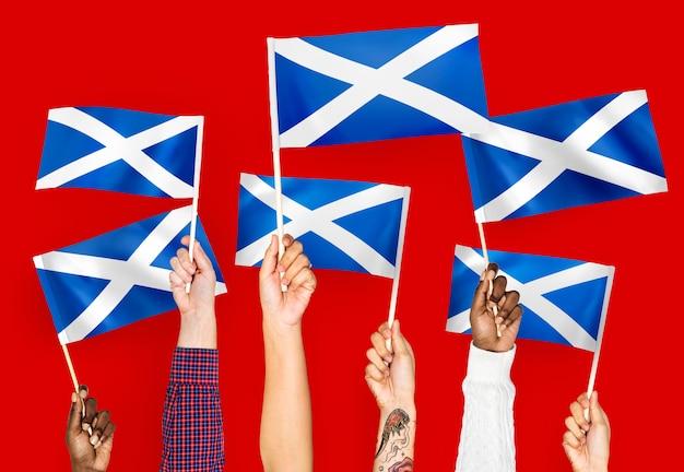 Руки размахивают флагами шотландии