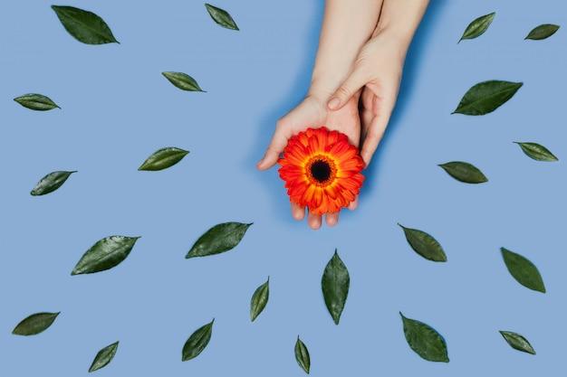 Руки с цветком.