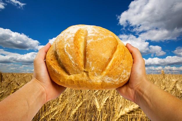 Руки с хлебом