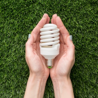 Hands with ecological light bulb