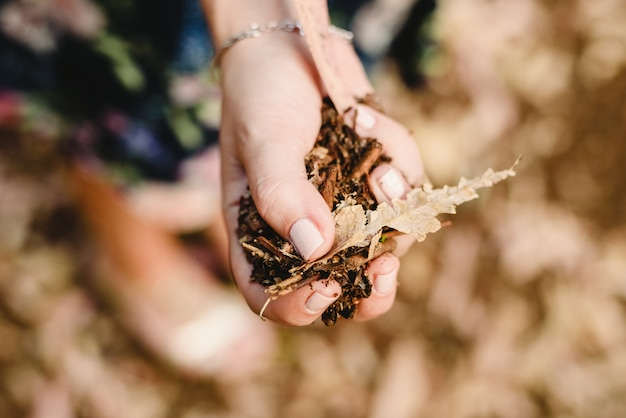 Hands with a handful of dried leaves and forest flowers