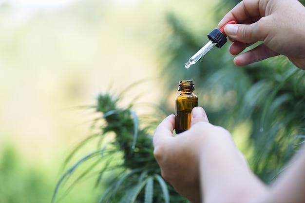 Руки с открытым контейнером с маслом cbd на плантации для медицинского использования.
