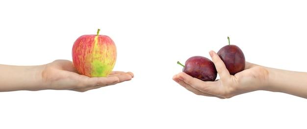 Руки со спелыми и свежими фруктами, красным яблоком и сливой, баннер, изолированные на белом фоне фото