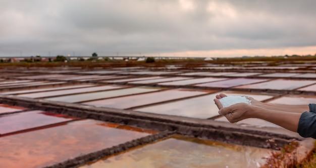 さまざまな色のプールのある塩田の前景に塩がある手、手に焦点を当てる