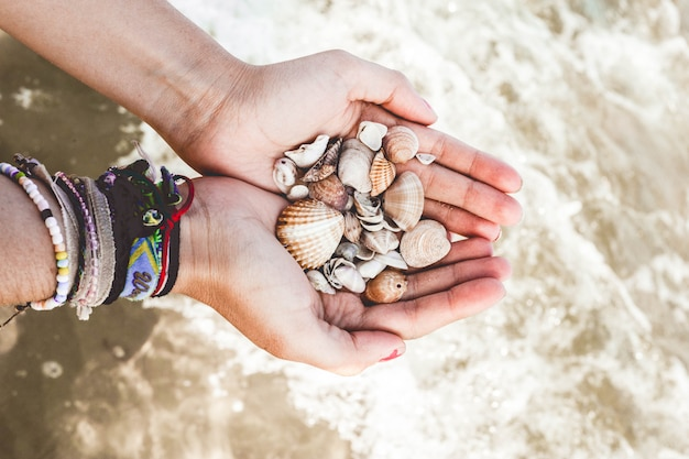 Hands with shells in the sea