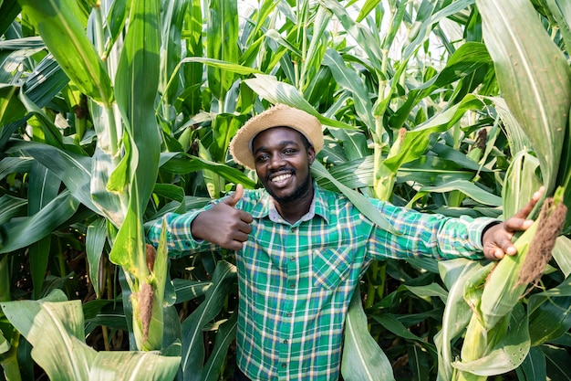 Handsome africa american farmer standing with bright smile in corn field examining crop at blue sky