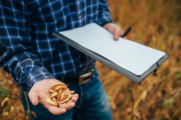 잘 생긴 농업 경제학자는 콩밭에서 태블릿 터치 패드 컴퓨터를 보유하고 수확하기 전에 작물을 검사합니다.