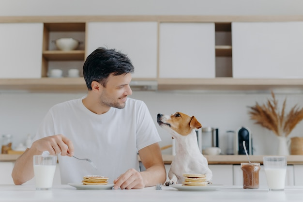 Handsome brunet male looks gladfully at his pet, has sweet dessert for breakfast, enjoys weekend has good relationship with pet pose at kitchen interior in modern apartment. people, nutrition, animals
