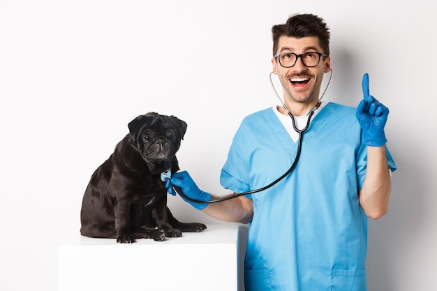 Handsome doctor veterinarian smiling, examining pet in vet clinic, checking pug dog with stethoscope, pointing finger up at promo banner, white background.