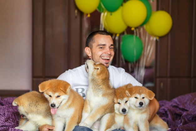 Handsome guy have fun hugs and play with akita inu puppies