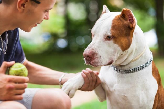Красивый парень играет с собакой на открытом воздухе