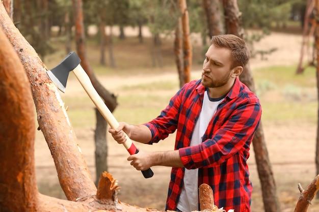 Красивый дровосек вырубает деревья в лесу