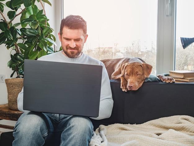 Красивый мужчина и очаровательный щенок. крупный план, в помещении. студийное фото, белый цвет. концепция ухода, воспитания, дрессировки и воспитания домашних животных