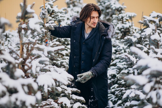 Handsome man choosing a christmas tree