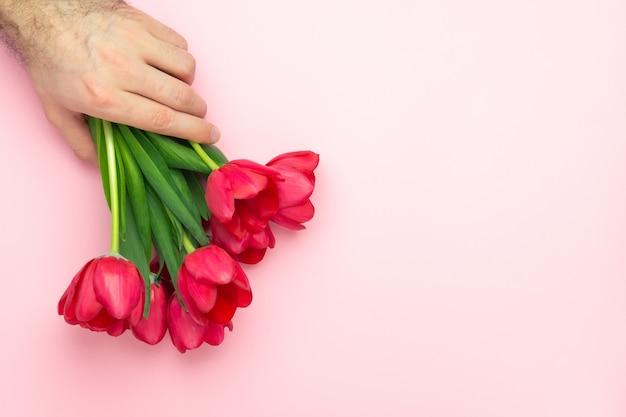ハンサムなマンの手は、ピンクの背景に赤いチューリップの花束を保持しています。フラット横たわっていた、トップビュー、コピースペース。女性の日、母の日、春のコンセプトにプレゼント。花飾り