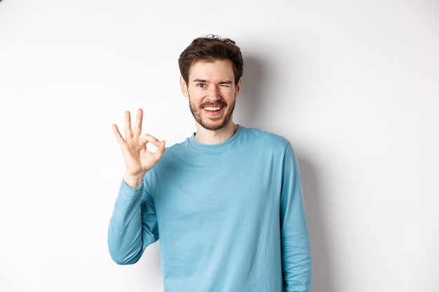 Handsome modern guy feeling confident, showing ok sign and winking at you, assure everything okay, standing over white background