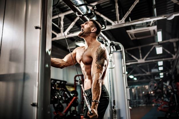 Красивый мускулистый фитнес культурист делает тяжелый вес упражнения на трицепс