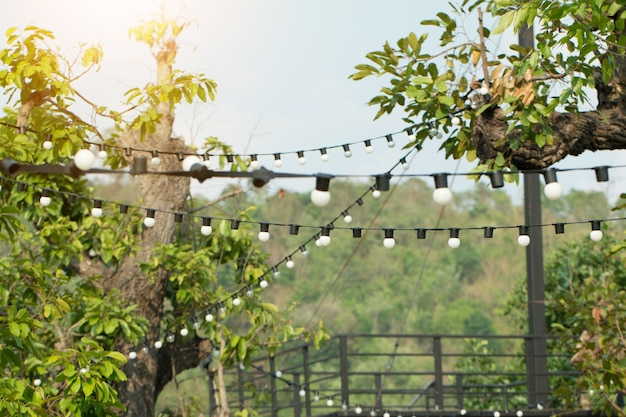 Hanging decorative lights for a wedding ceremony in garden