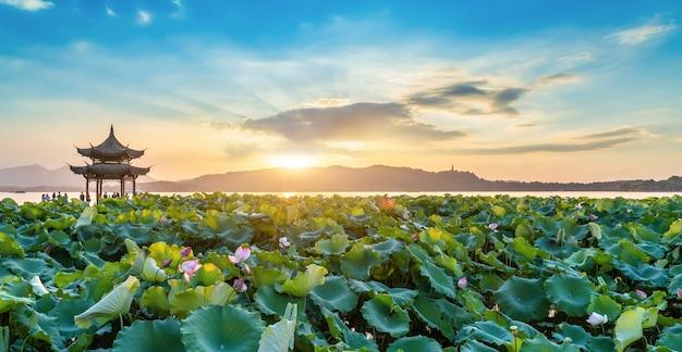 杭州西湖庭園の自然景観