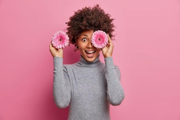 Felice donna afroamericana copre gli occhi con fiori di gerbera rosati, si diverte e ridacchia positivamente, andando a decorare la stanza per la festa