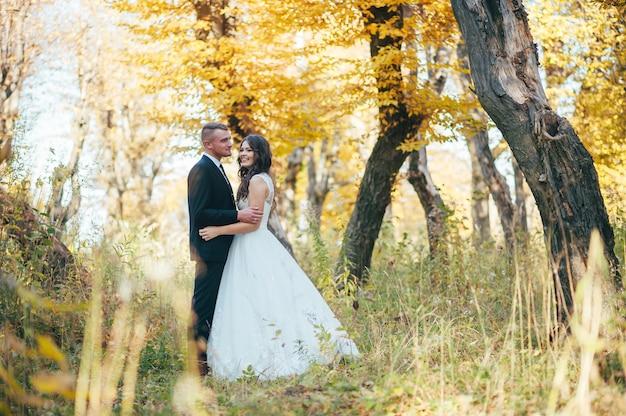幸せで愛の秋の公園で新郎新婦の結婚式の日