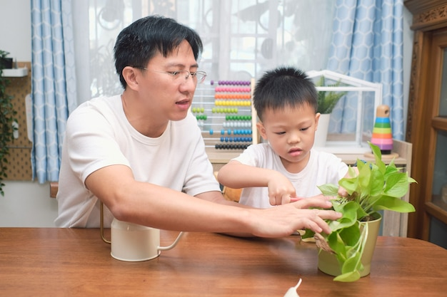 Happy asian father and son having fun cutting a piece of a plant in living room at home, introduce scissor skills for children, homeschooling, home gardening