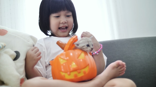 Happy asian girl playing hide and seek with little kitten inside pumpkin bucket