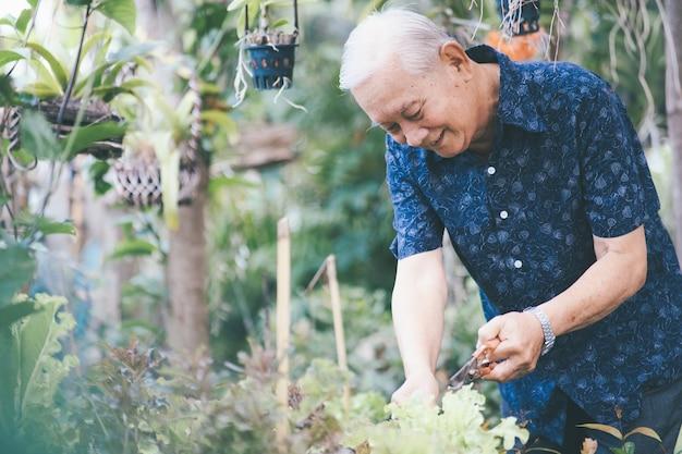 Happy asian senior man in his garden. happy retirement age. Premium Photo