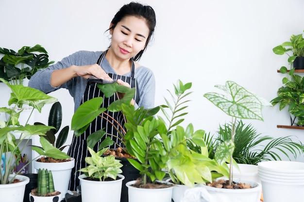 幸せなアジアの女性は週末に彼女の緑の植物の世話をします