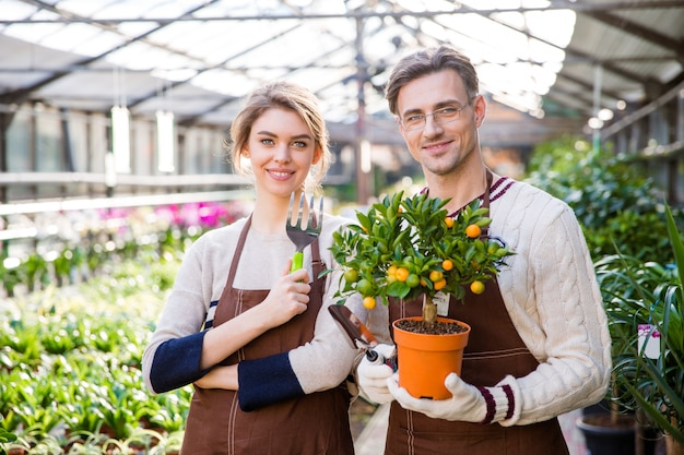 Happy attractive woman and man gardeners holding small mandarine tree and tools for plants transplsntation in garden center