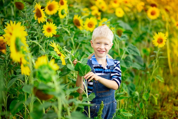 Happy baby boy blond sitting in a field with sunflowers in summer