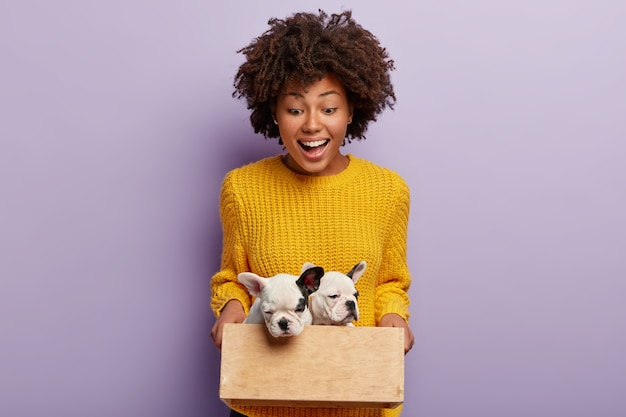 Happy beautiful woman holds wooden box with two cute pedigree small puppies