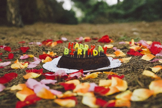 Happy birthday cake with letters candles in the forest