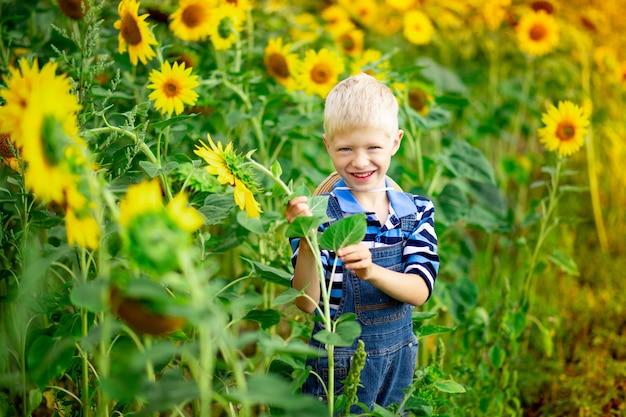 Счастливый белокурый мальчик стоит в поле с подсолнухами летом, детский образ жизни.