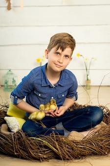幸せな少年は巣に座って、かわいいふわふわのイースターアヒルの子を腕に抱いています。