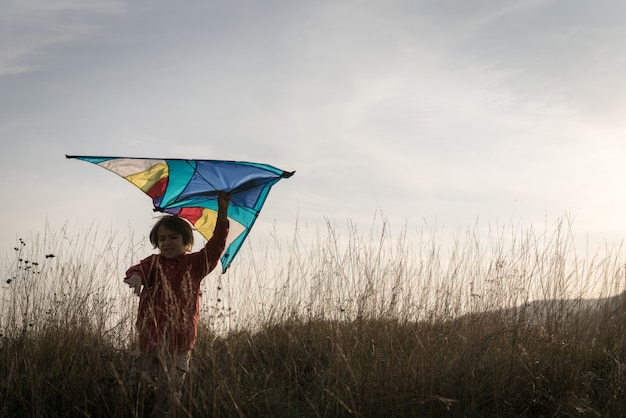 Happy  boy with kite silhouette on grass meadow
