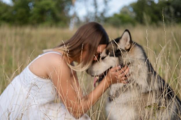 Счастливая кавказская белокурая женщина в белом платье обнимает и целует собаку аляскинского маламута в летнем поле. лицом к лицу. мягкий фокус. любовь и дружба между человеком и животным.