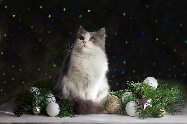 クリスマスのおもちゃと花輪で幸せなお祝い