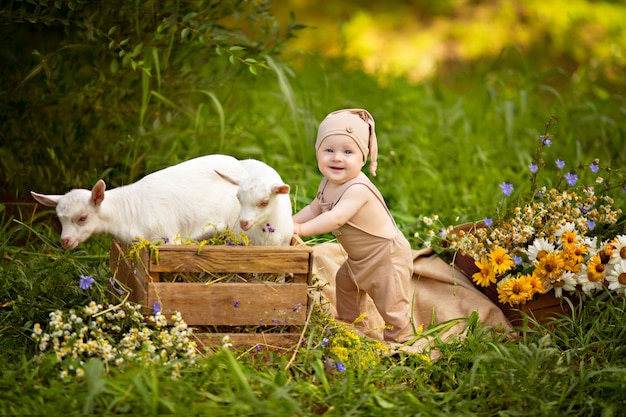 Happy child boy with white goats in spring on nature in the village with greenery and flowers.