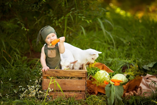 Happy child boy with white goats in spring on nature in the village with herbs and vegetables