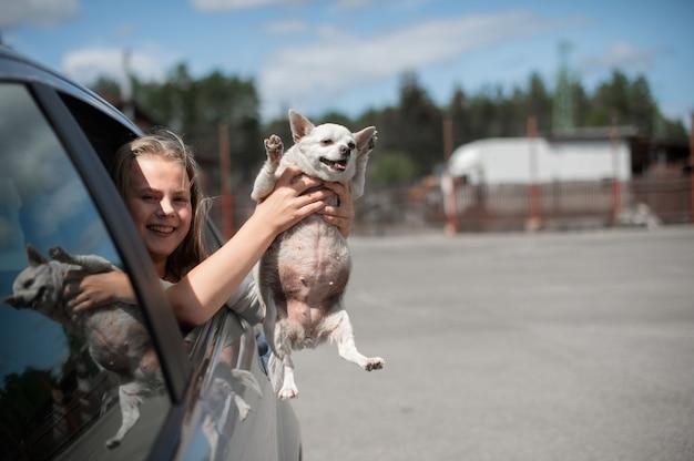 열린 차창 밖을 바라보는 행복한 어린 소녀와 재미있는 개 치와와