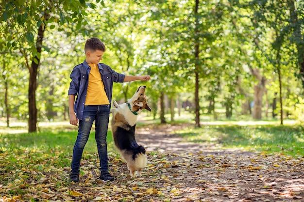 Счастливый ребенок в парке, играя со своей собакой