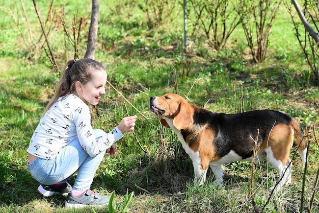 Счастливая детская игра с домашним другом в солнечный день маленькая девочка тренирует собаку на летней природе улыбка ребенка
