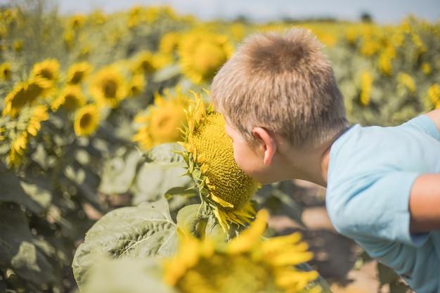 緑の春の野原で楽しんでいるひまわりの屋外の子供と遊ぶ幸せな子供