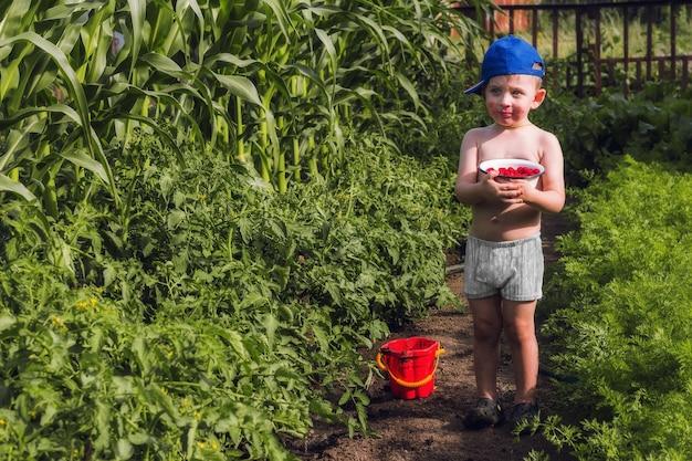 幸せな子供時代。かわいい赤ちゃんは庭でラズベリーとボウルを持っています。